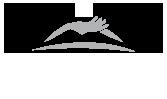 Bodega Caelum Logo